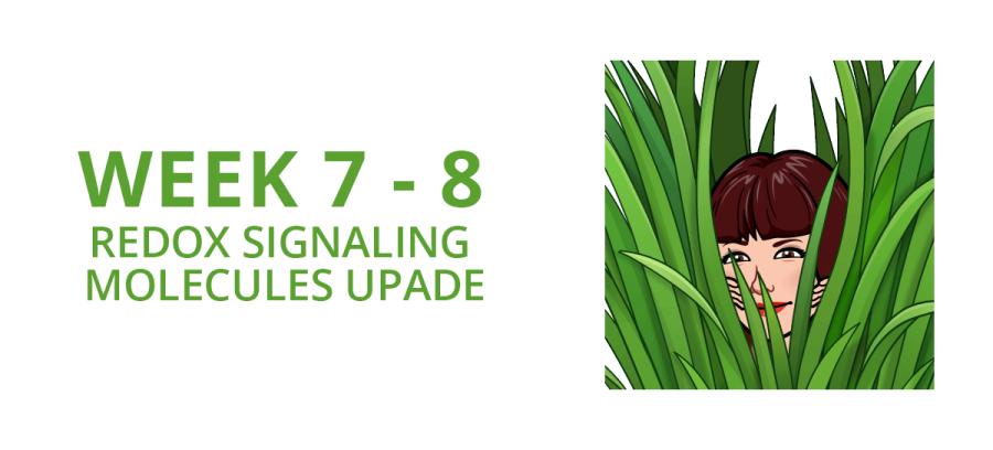 Redox Signaling Molecule update - week 8